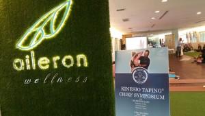 2015 Kinesio Aileron (5)