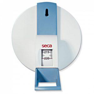 SECA 206 Wall Scale